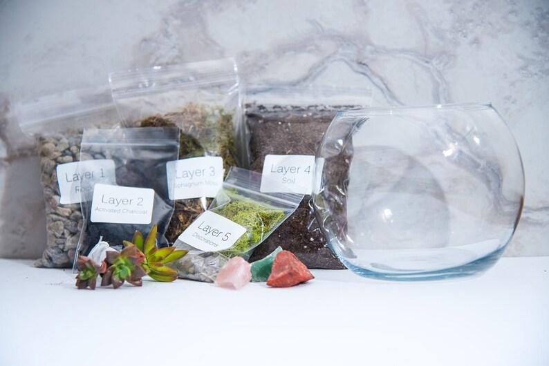 Terrarium Kit MEDIUM. Succulent Terrarium Home & Garden image 0