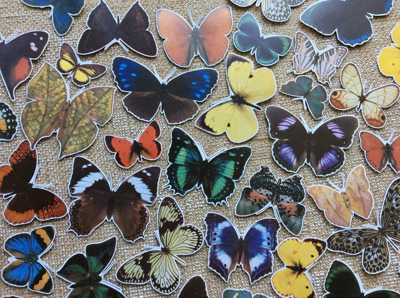 scrapbooking card making snail mail collage 12x vintage butterfly paper cut outsfussy cuts junk journal