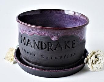 Purple Mandrake planter/ Harry Potter planter/ succulent planter/ ceramic planter/  gift for him/ birthday gift/ gift for her/ wedding gift