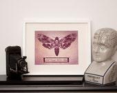 Pinned Moth 'till death us do part' - Art Print - Choose a Size - Gothic Wall Art