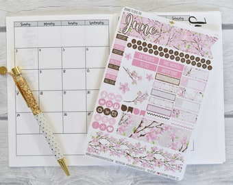 Annie Plans B6 Size Monthly Kit | You pick the month! 839L