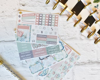 Succulent Mini Kit | Made to fit any planner! 38L1-4