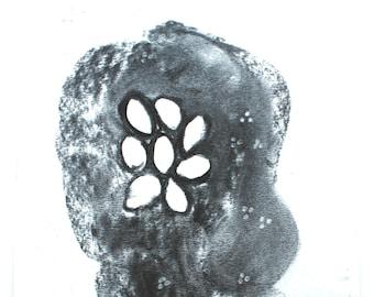 Artist Charcoal Drawing - Original, botanical artwork.