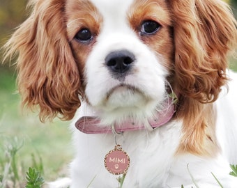 Pet ID Tag, Personalised Dog Tag For Collar, Giraffe Print Pet Tag