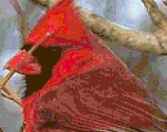 16 count PDF Pattern - Realistic Cardinal Counted Cross Stitch Pattern
