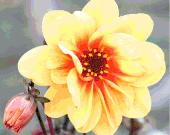 16 count PDF Pattern - Realistic Yellow Flower Counted Cross Stitch Pattern