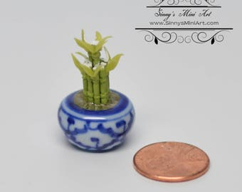 1:12 Dollhouse Miniature Lucky Bamboo in Ceramic Planter/ Miniature Gardening BD A1036