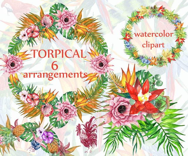 Tropic watercolor clipart: TROPICAL FLOWERS | Etsy