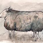 """Original Peaceful Sheep Watercolor 5.5"""" x 8.5"""""""