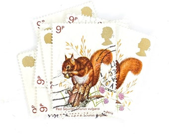 Christmas Craft Squirrel Wooden Rubber Stamp DIY Wedding Favours Vintage Stamp Gift Tags Squirrel Stamp Craft Stamps Scrapbooking