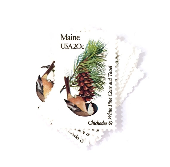 4 x Maine 20 cents Chickadee & White Pine Cone and Tassel   Etsy