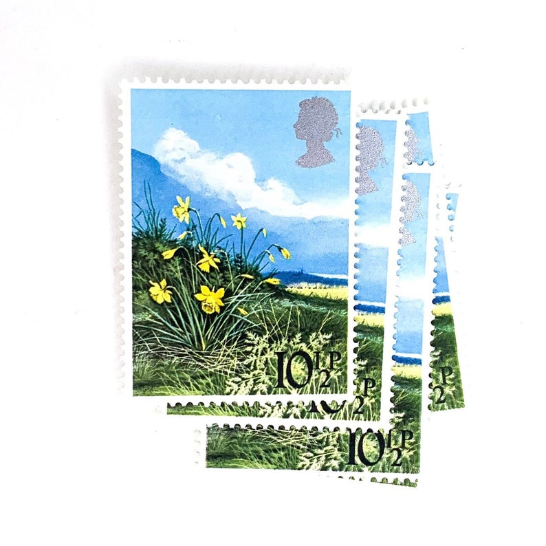 5 x Daffodils UNused GB Mint MNH 10p Vintage 1979 British Postage Stamps Spring Yellow Flowers crafts for seals card making mail