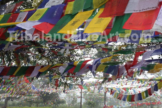 Lumbini - Birth place of Siddhartha Gautama , Nepal - Digital Download Photography