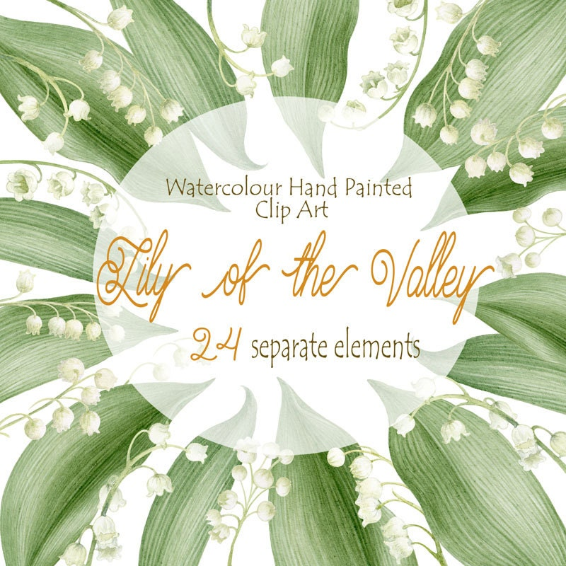 Lily of the valley Watercolour Clipart, Hand Painted Graphics ...