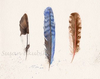 Feathers Watercolor, Feathers Painting, Feathers Illustration