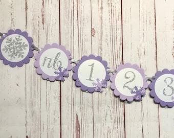 Winter Onederland Photo Banner, Snowflake Photo Banner, Snowflake First Birthday, 1st Birthday Winter Wonderland, Purple 1st Birthday