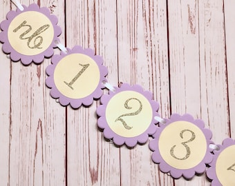 Purple Photo Banner, Lavender and Gold, Purple and Gold Birthday, Lavender Birthday Banner, Monthly Photo Banner, Milestone Banner, NB to 12