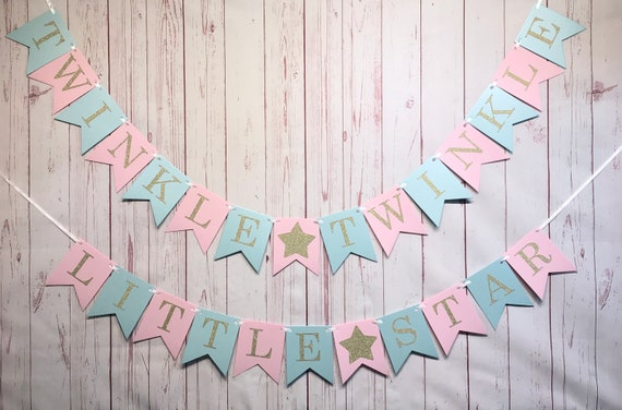 Gender Reveal Party /'We Wonder What You Are/' Baby Shower Star Bunting Banner