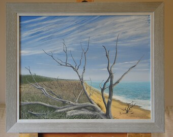 Beach Deadwood