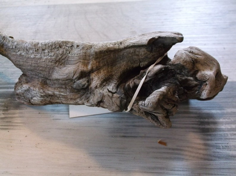 Interesting Small Sized Piece of Fresh Water driftwood Great size for an Aquarium Lightweight with great details and colors Rustic  918-110