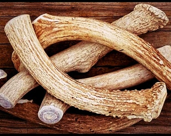 1 POUND -Premium Deer Antler Pieces- Dog Chews - Natural Shed Antlers
