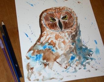 SALE Owl original watercolour, original watercolor, owl art, owl original, wildlife art, bird art, owl