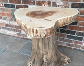 Pecan top end table