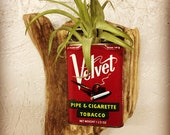 Driftwood and Tobacco Tin Wall Vase