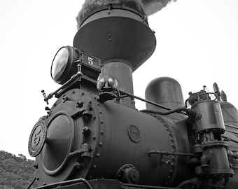 Amazing Shay locomotive photo.  Professional print, multiple sizes.  Very sharp image for the train lover or anyone else.  Very unique image