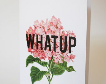 Greeting card : WHAT UP