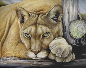 e673286e11d4 Puma fine art