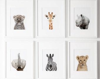 Set of 6, Nursery decor, Nursery wall art, Modern Nursery prints, Safari nursery decor, Safari nursery prints, Animal prints for nursery