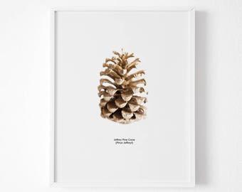 Gold Pine cone decor Forest print Botanic poster ,Gold Photography,Gold Pine Cone Print, Pine Cone Decor, Nature Art,  Minimalist Art,