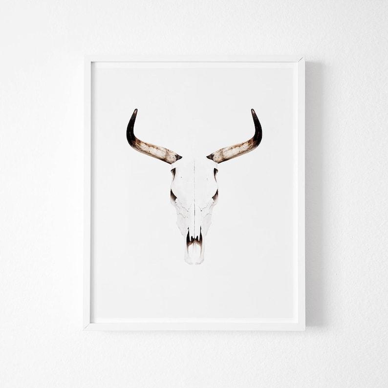 Bull Print, Buffalo, Bull art, Buffalo horns, Skull print, Animal skull,  Minimal art, Minimalist, Horns Wall Art, Scandinavian Printable