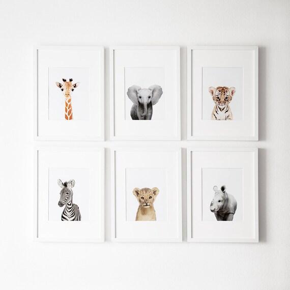 Grabados de vivero Safari, Conjunto de 6 impresiones, decoración de vivero, arte de la pared del vivero, grabados de animales del bebé para la guardería