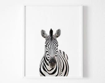 Zebra Print Nursery Animal Wall Art Black And White Decor Safari African Printable Poster