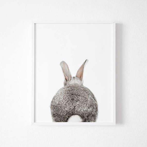 Rabbit Print Rabbit Butt Tail Gray Animal Wall Art Nursery | Etsy