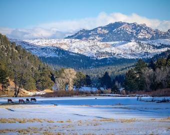 Colorado Landscape, Landscape Photo, Colorado Photo, Travel Photo, Mountain Photo, Canvas Print, Home Decor, Winter Photo, Horse Photo