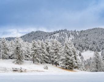 Colorado Landscape, Landscape Photo, Colorado Photo, Independence Pass, Travel Photo, Mountain Photo, Canvas Print, Home Decor, Rockies