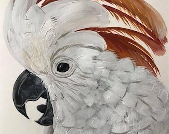 """Moluccan Cockatoo, Art Print, """"Ketut"""", hand signed"""