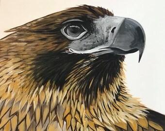 "Eagle, Art Print, ""Levi"", hand signed"