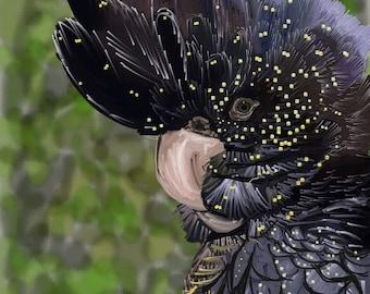 """Black cockatoo, """"Coco"""", digital art prints"""