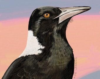 "Magpie ""Joe"", digital art prints"