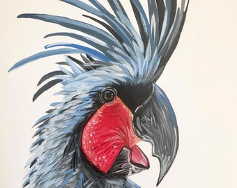 """Palm Cockatoo, Art Print, """"Percy"""", hand signed"""