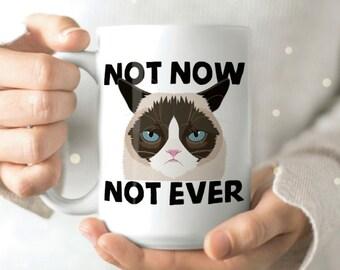 Grumpy Cat Mug - Mean Mug - Funny Cat Mug - Funny Cat Coffee Mug - Funny Cat Mugs - Cat Lay Mug - Coffee Cup Cat Gift - Cat Mug Cute