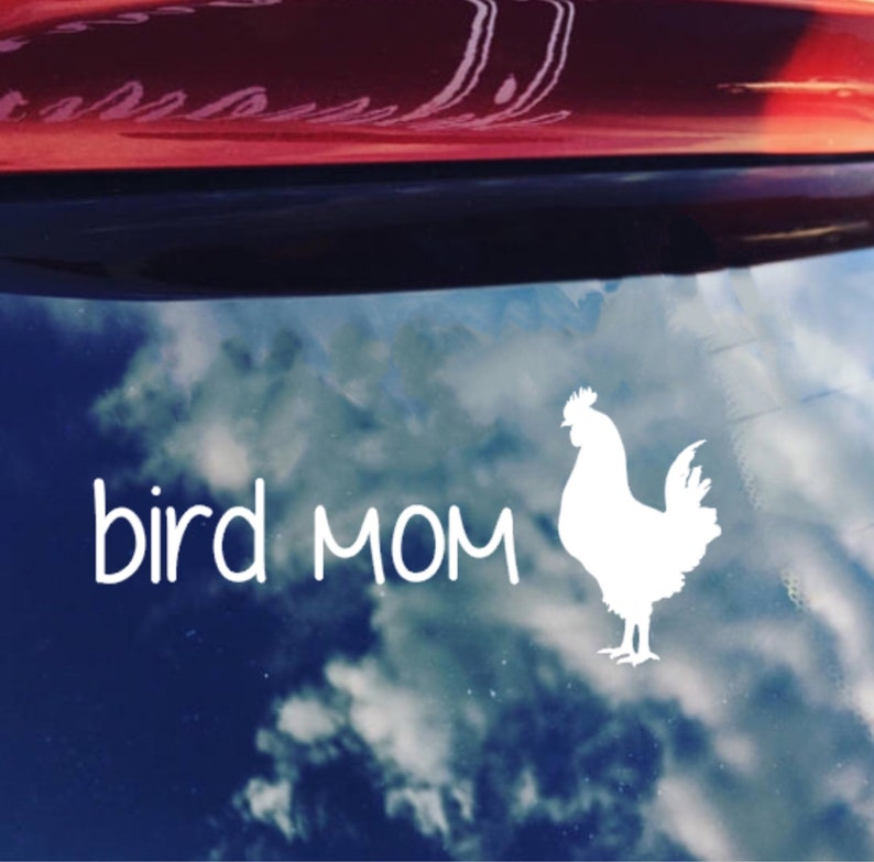 CAR DECAL Bird Mom Decal, Window Decal, Vinyl Decal, Funny Decal, Chicken  Decal, Adhesive Decal, Rooster Decal, Chicken Mom, Vinyl Decal Mom