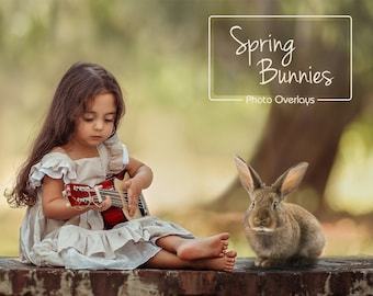 Spring Bunnies, Easter overlays, Real Animals, 10 PNG, photoshop overlay, fantasy, clip art, photoshop, Animal Overlays, Bunny Overlays