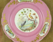 Antique 18th century (1767) Sevres pink hand-painted porcelain cabinet plate, bird cartouches with gold gilt gilded detail