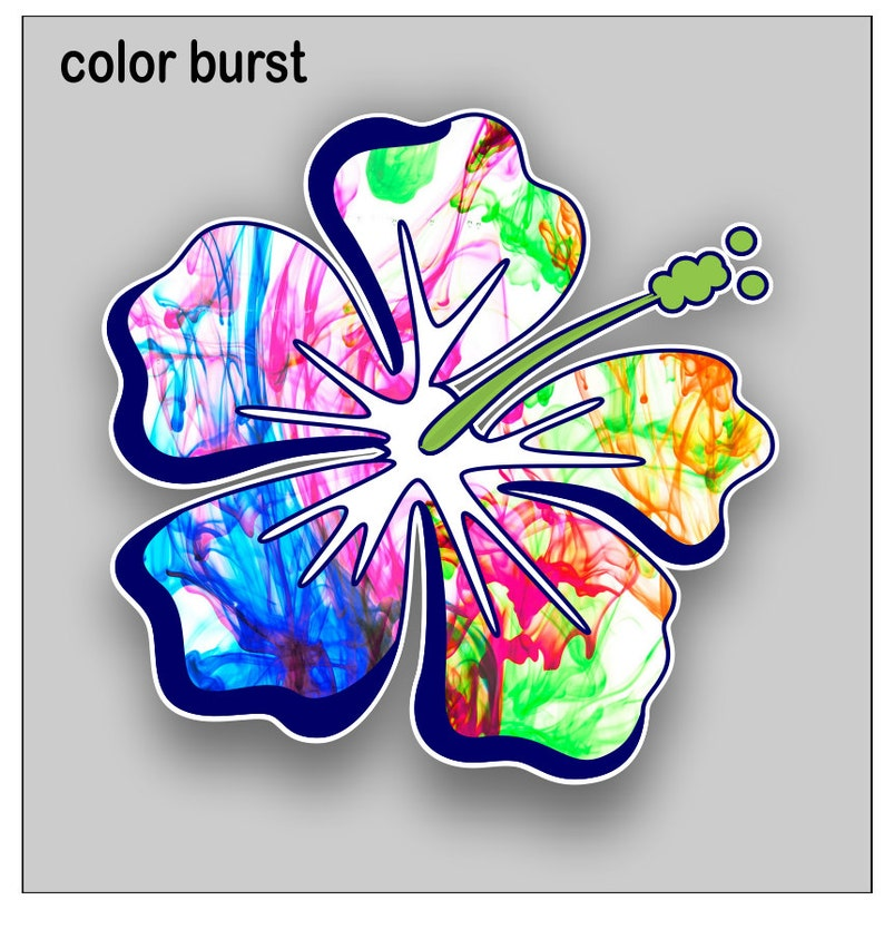 effd9a96e35f09 Hibiscus Flower color burst sticker   decal Free Shipping