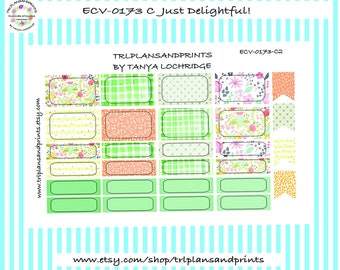 Just Delightful! - Planner Stickers - Bordered Half & Quarter Boxes - Erin Condren, Plum, Makse, Sadie's, Lights Planner, B6 [ECV-0173-C]